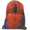 Spider man Trainer Bag