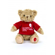 Birmingham Children's Hospital Bear